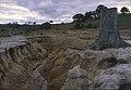 CSIRO ScienceImage 1373 Soil Erosion.jpg