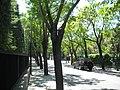 Calle en Mirasierra.JPG