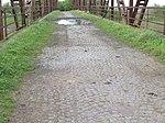 Calzada viejo puente RP56 sobre el Canal 2 (2).JPG