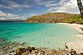 Caneel Bay Snorkeling at Turtle Bay 2.jpg