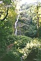 Canonteign Falls - Waterfall near Exeter - 2000 - Lady Exmouth Waterfall (5370495743).jpg