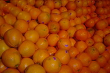 Caracaranaveloranges.jpg