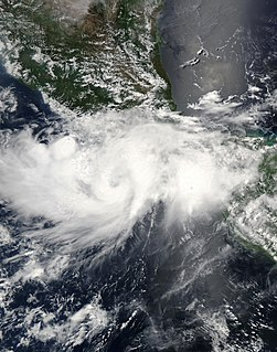 Pacific tropical storm in 2003