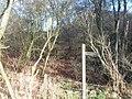 Carters Lodge Lane - panoramio (3).jpg
