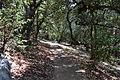 Castle Rock State Park 3.JPG