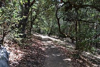 Castle Rock State Park (California) - Image: Castle Rock State Park 3