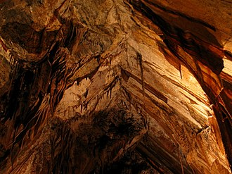 Gunns Plains Cave - A naturally formed vaulted ceiling in the cave.