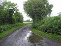 Cavanacaw Road - geograph.org.uk - 1386126.jpg