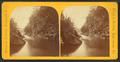 Cavendish Falls, the Black River, Cavendish, Vt. (Windsor Co.), from Robert N. Dennis collection of stereoscopic views.png