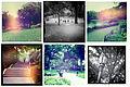 Central Park - Hipstamatic.jpg