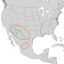 Cercocarpus breviflorus range map 1.png