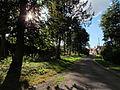Chalandry en été a l'ombre des arbres.JPG