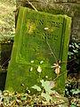 Chenstochov ------- Jewish Cemetery of Czestochowa ------- 166.JPG