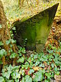 Chenstochov ------- Jewish Cemetery of Czestochowa ------- 61.JPG