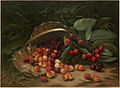 Cherries (Boston Public Library).jpg