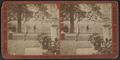 Chestnut Lawn, Residence of Gen. Alexander Shaler, Ridgefield, N.J, from Robert N. Dennis collection of stereoscopic views.png