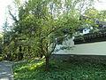 Chigabo-außenmauer-2.jpg