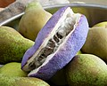 Chocolate Vine, Akebia quinata on large conference pears (36808089700).jpg