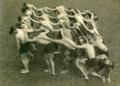 Choreografia grupowa Rudolfa Labana.png