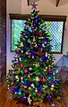 Christmas trees in private house in Brisbane, Australia.jpg
