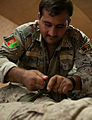 Class plants seeds for better combat casualty care 131021-Z-SW098-073.jpg