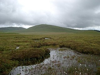 National nature reserve in northern Scotland