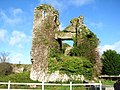 Clonmore castle - geograph.org.uk - 1023685.jpg