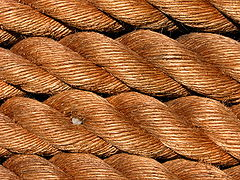 Closeup ropes.jpg
