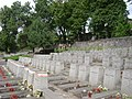 Cmentarz na Rossie - panoramio.jpg