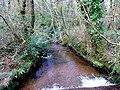 Cornish Brook 2 - geograph.org.uk - 1324430.jpg