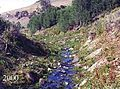 Cottonwood Creek, BLM, Oregon, 2000.jpg