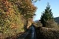 Country lane near Newchapel - geograph.org.uk - 608462.jpg