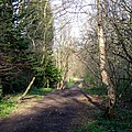 Course of old Railway, near Claregate, Wolverhampton - geograph.org.uk - 686338.jpg
