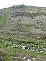 Crags, Beinn Mheadhoin - geograph.org.uk - 886018.jpg