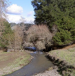 English: Crane Creek, looking east from Petalu...