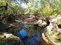Creek - FT Big to Little Shoals (4050226786).jpg