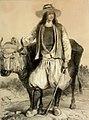 Cultivateur de Saint-Evarzec.jpg