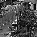 Curitiba chacarera pa' la medianoche al mediodía (8047474123).jpg