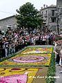 Cusano Mutri (BN), 2007, Infiorata, la processione pomeridiana. - Flickr - Fiore S. Barbato (22).jpg