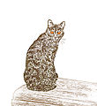 Découpe silhouette de chat.jpg
