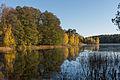 Dammtorpssjön October 2013 04.jpg