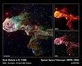 Dark Globule in IC 1396.jpg