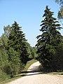 Daugailių sen., Lithuania - panoramio (29).jpg