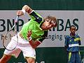 David Ferrer - Roland-Garros 2013 - 012.jpg