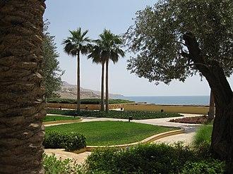 Washingtonia - Image: Dead Sea Kempinski Hotel (7)