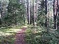 Degučių sen., Lithuania - panoramio (167).jpg