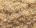 Deposits of BILINSKA KYSELKA minerals.jpg