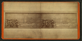 Detail of a bas relief at the base of the Soldiers' and Sailors' Monument, from Robert N. Dennis collection of stereoscopic views 5.png