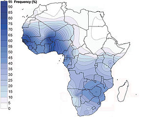 Haplogroup E-V38 - African spatial distribution of haplogroup E3a-M2. Rosa et al. (2007)