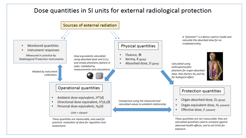 External dose quantities used in radiation protection and dosimetry Dose quantities and units.png